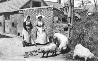 Farmyard1910Allix.jpg