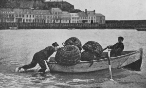 GM20LobsterFishingGorey1903.jpg